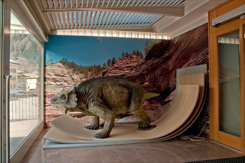 museo-geologico-delle-dolomiti-predazzo_imagefullwide.jpg